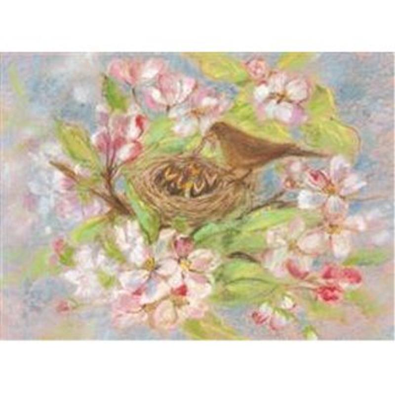 Postcards- Bird Nest 5 pk