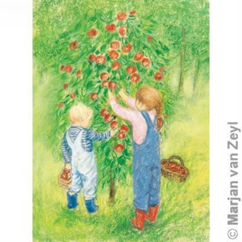 Postcards- Apple Harvest 5 pk