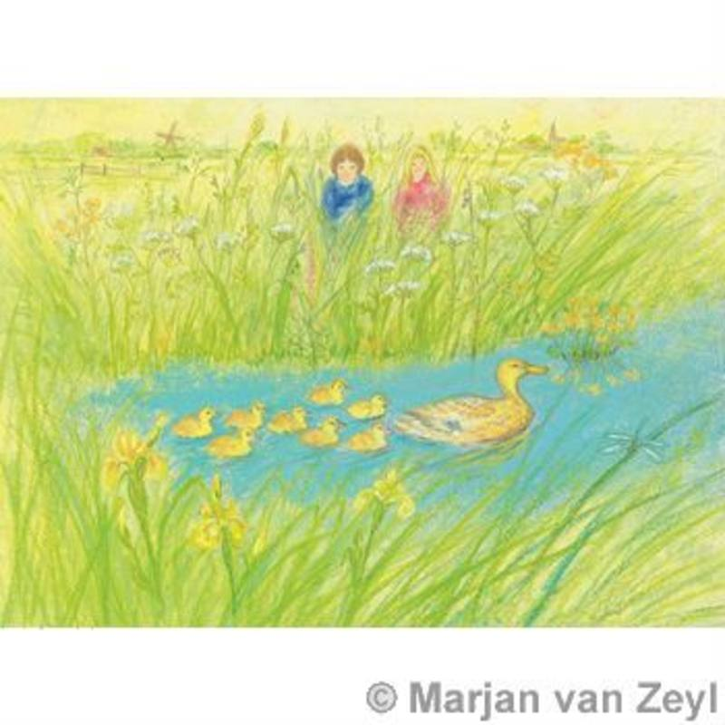 Postcards- On the Riverbank 5 pk