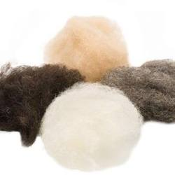Buy Organic Wool Fleece - 4 Earth Tones 100g DUE JAN in AU Australia.