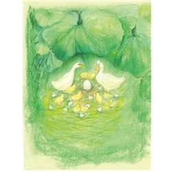 Buy Postcards- Geese and Egg 5 pk SPECIAL ORDER in AU Australia.