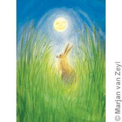 Buy Postcards- Hare and Moon 5 pk in AU Australia.