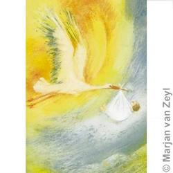 Buy Cards w Envelopes- Stork Carrying Baby 5 pk in AU Australia.