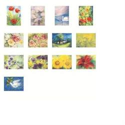 Buy Postcards 'Flowers'  ass pk of 13 LARGE postcards (Do not fit backing sets) SPECIAL ORDER C in AU Australia.