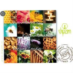 Buy Dipam Candle Catalogue in AU Australia.